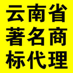 云南省著名商标申报代理