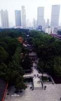 辽宁退休狱警到合肥做传销 疑似为地区头目