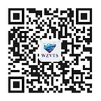 温州海事局