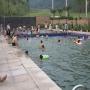 清凉一夏-九龙庄园游泳池免费开放