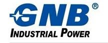 GNB蓄电池-公司介绍