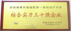 2004.10-综合实力30强