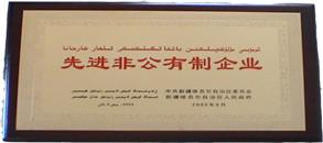 2005.6-自治区先进非公有制企业牌