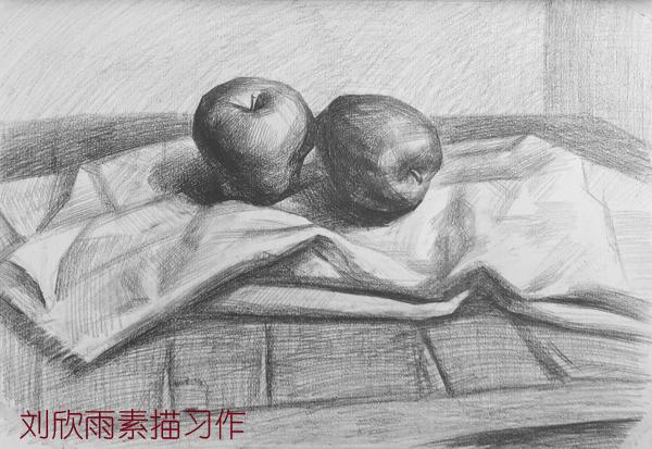 《木板上的苹果》素描