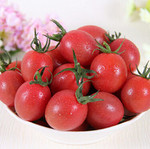 海南千禧小番茄  5.5斤