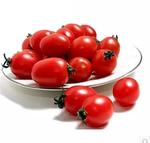 山东小番茄  8斤