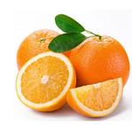 信丰脐橙   20斤