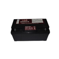 日月潭蓄电池REDSUN12-65