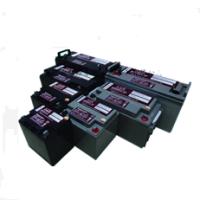 日月潭蓄电池REDSUN2-100