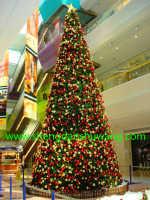 圣诞树是什么树 采用德国技术自主研发生产加工而成大中小型圣诞树