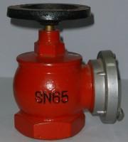 室内消火栓SN65