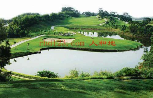 高尔夫2.jpg