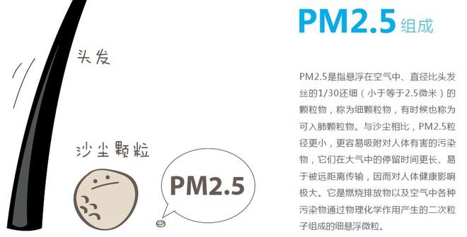 PM25 組成.jpg