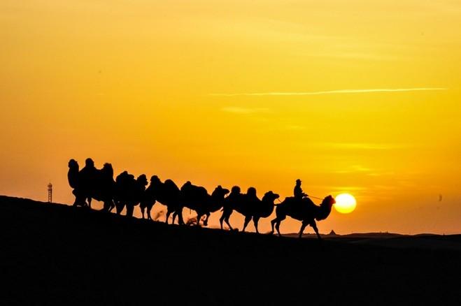 丝绸之路-沙漠.jpg