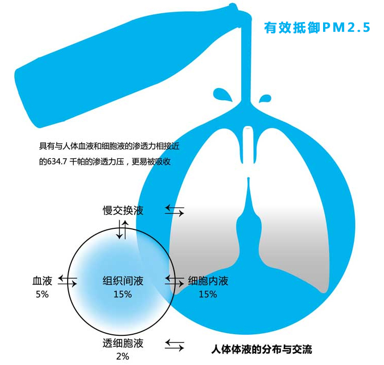 萨奇肺泉5.jpg