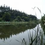 常熟市尚湖